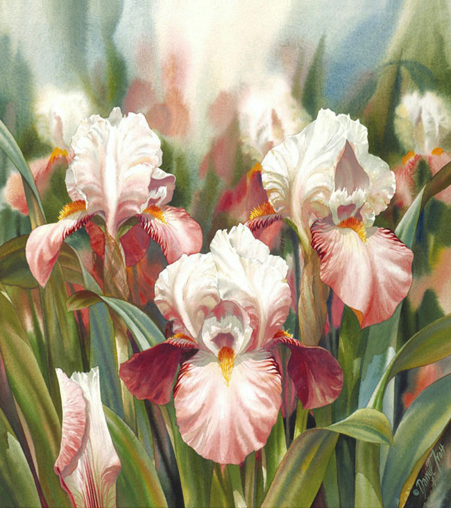 Darryl-Trott-Artwork-Iris-Summer