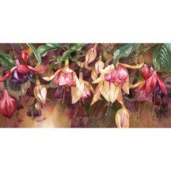 Radiant Fuchsias