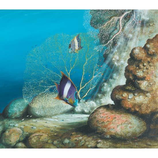 Reef Dwellers