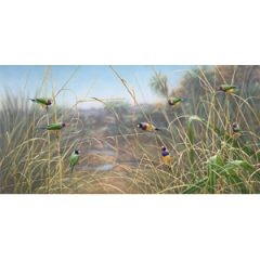 Grasslands II