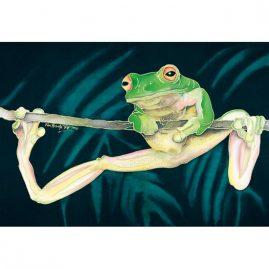 Hang On Frog